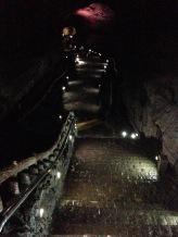Jeju - le tunnel de lave