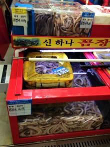 Busan - Marché de Jagalchi